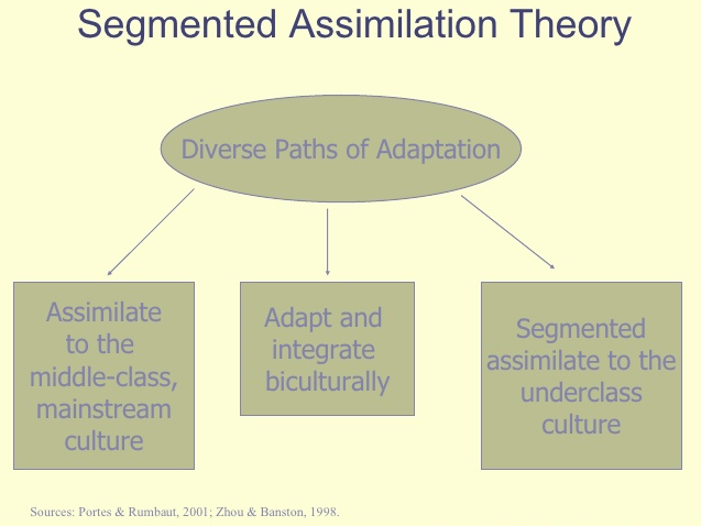 segmented assimilation theory quizlet